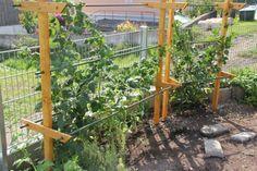Die Obi Selbstbauanleitungen Mit Bildern Garten Pflanzen