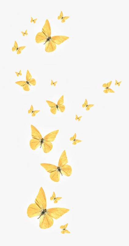 Golden butterfly PNG and Clipart