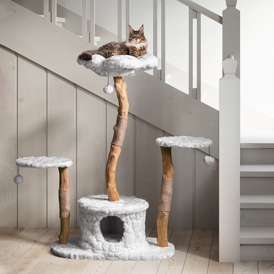 Mau Lifestyle Leone 50 In Modern Wooden Cat Tree Condo Brown Chewy Com In 2020 Wooden Cat Tree Cat Tree Condo Wooden Cat