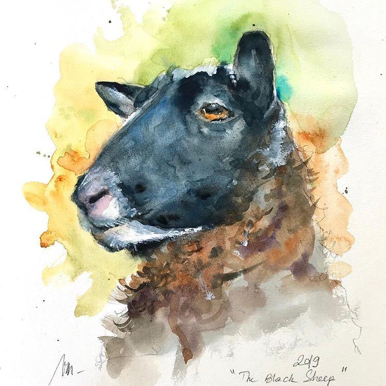 Watercolor Sheep By Valeriemafrica Ovca Akvarel Watercolor