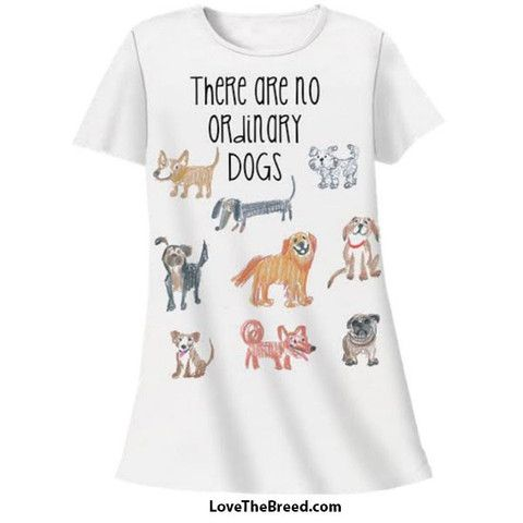 There are No Ordinary Dogs Night Shirt