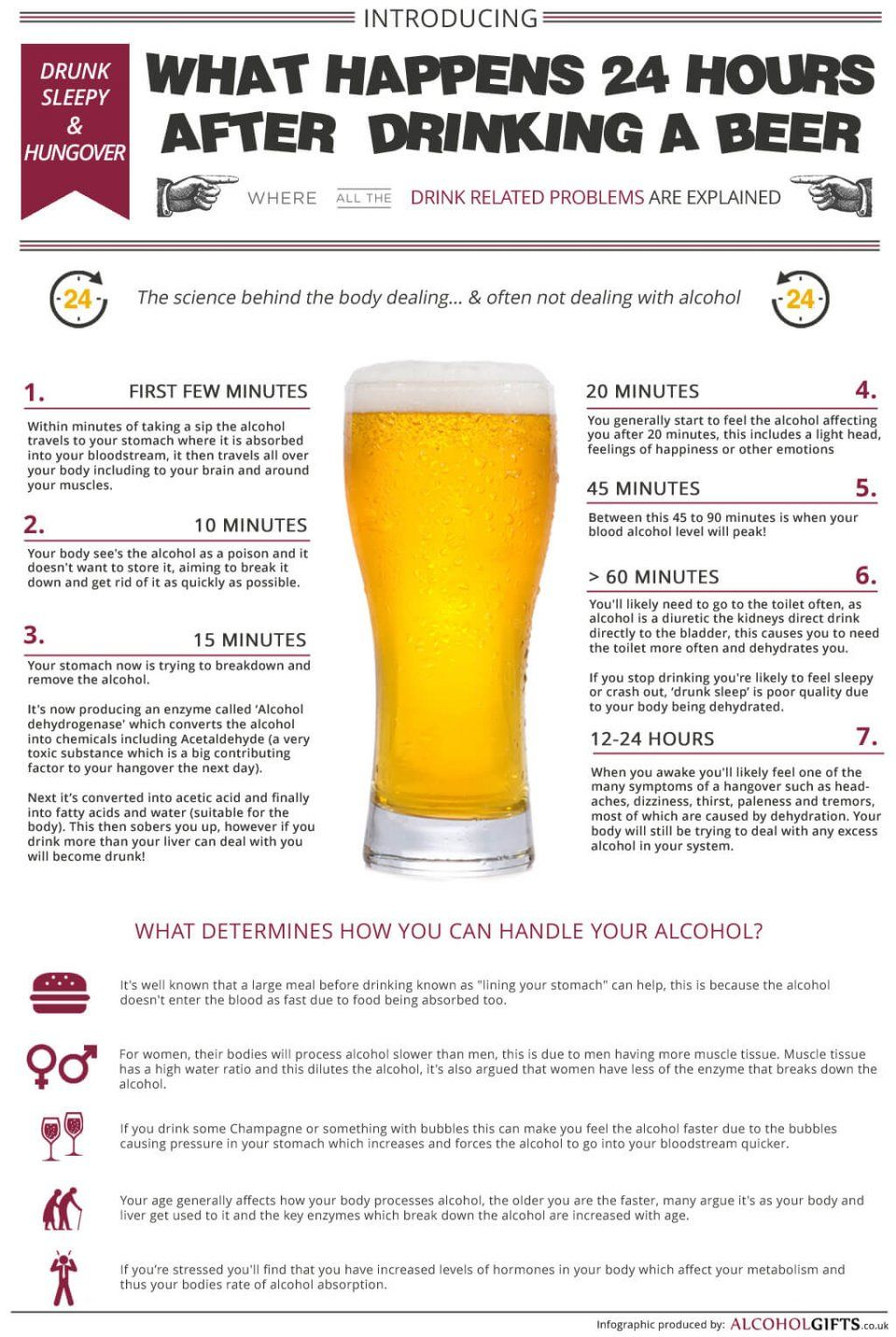 Effects Of Beer On The Body Through 24 Hours