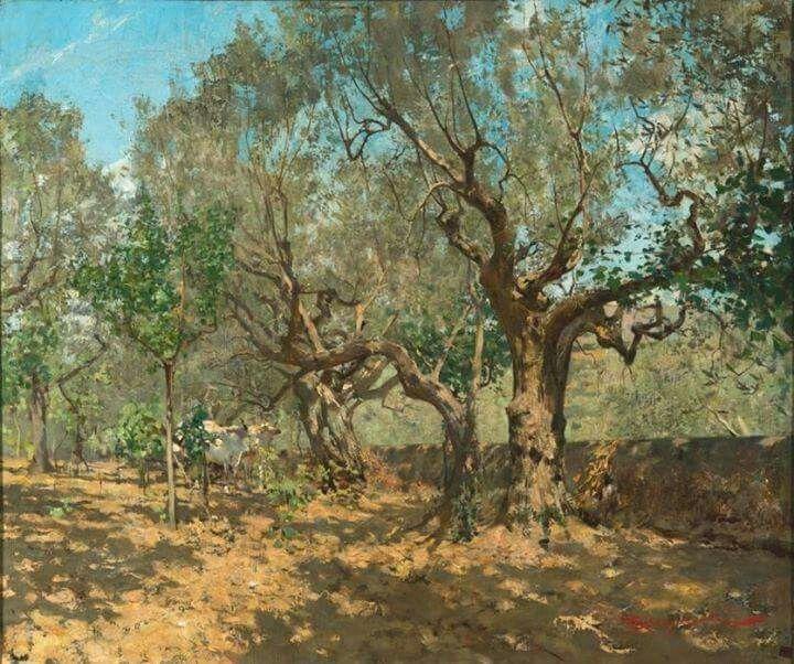 Telemaco Signorini Ulivi a Settignano, 1885 ca Olio su tela, 50x78 cm