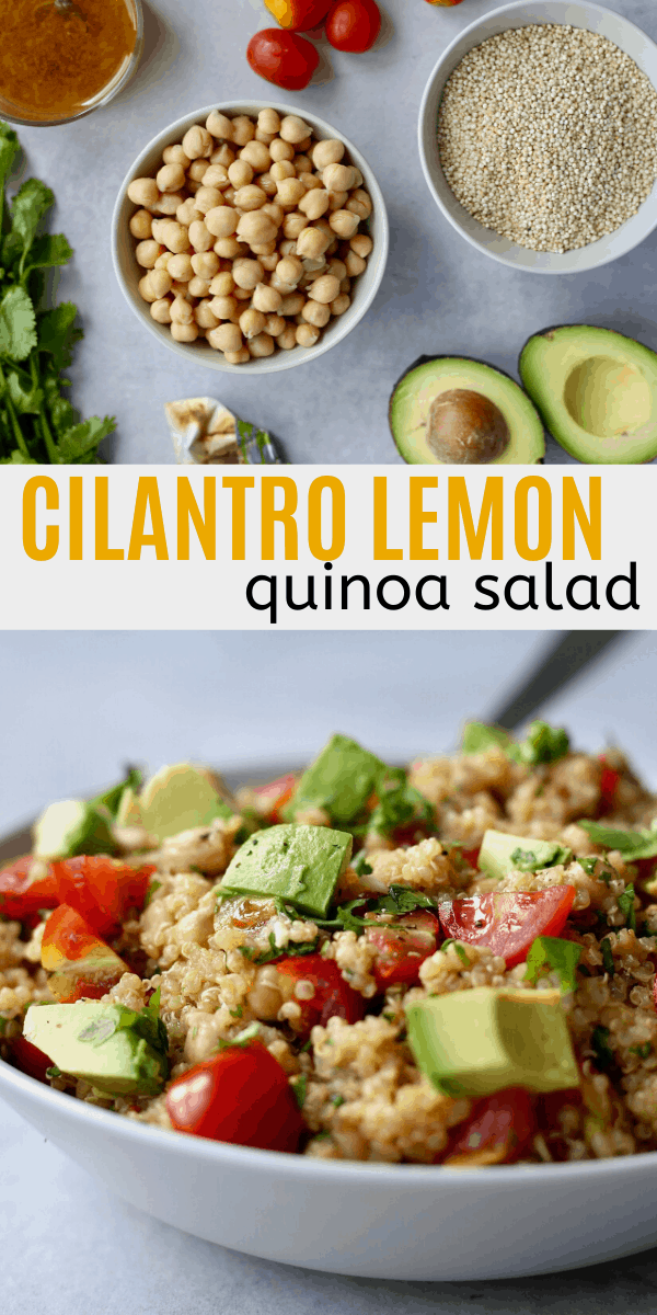 Cilantro Lemon Quinoa Salad The Conscientious Eater Recipe In 2020 Quinoa Recipes Easy Lemon Quinoa Vegan Quinoa Salad
