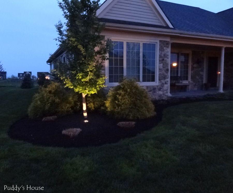 DIY Landscape Light - After - light at night Gardens/Landscaping