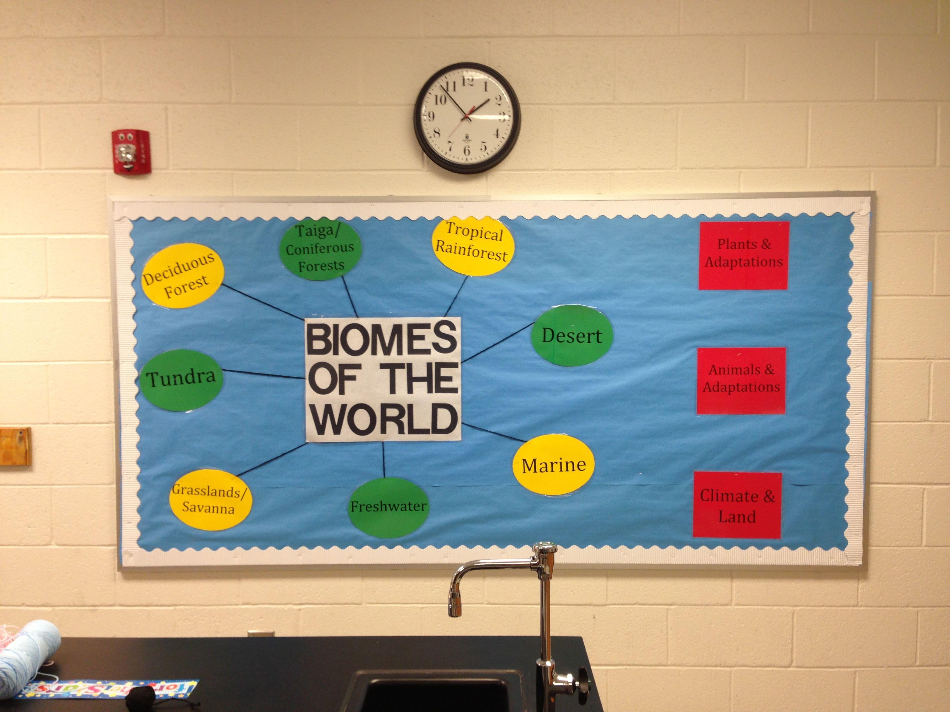 Biome Worksheet Elementary
