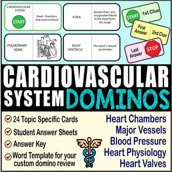 Cardiovascular System ~DOMINO REVIEW~ 24 Cards + Answer