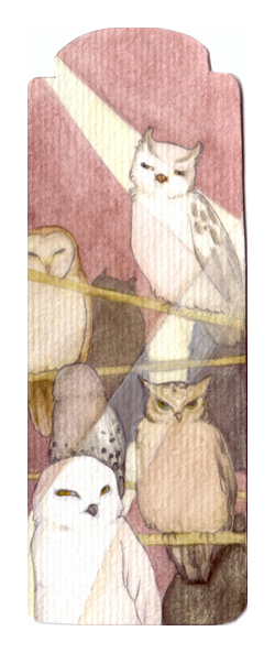 Owls by vintage-revolution