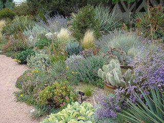 water wise garden designs. Lush waterwise garden at the Denver Botanic Garden  Design by Lauren Springer Ogden
