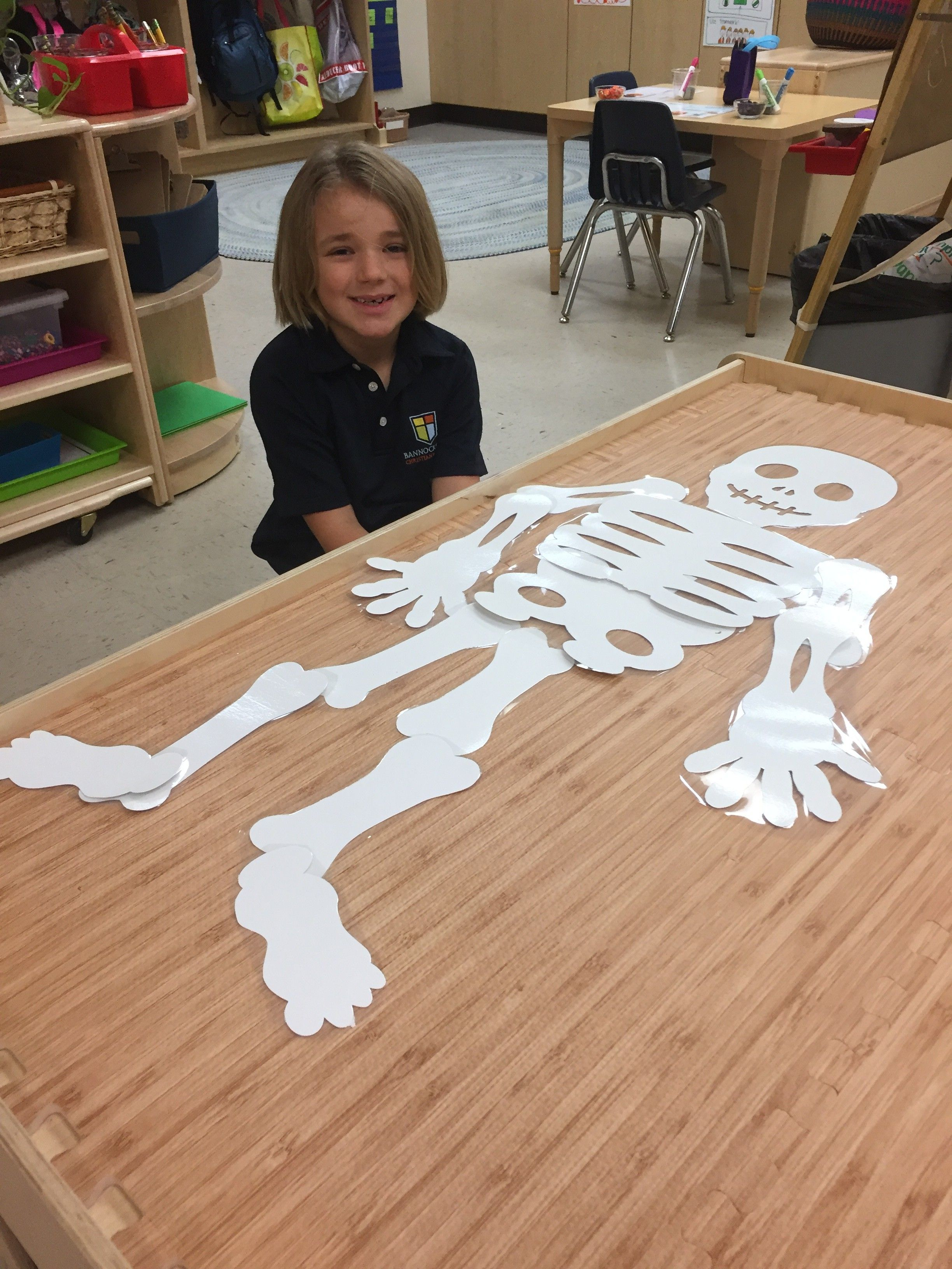 Learning About Our Amazing Skeletal System In Kindergarten