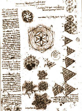 The Monkey Buddha Flower Of Life Drawings By Leonardo Da Vinci