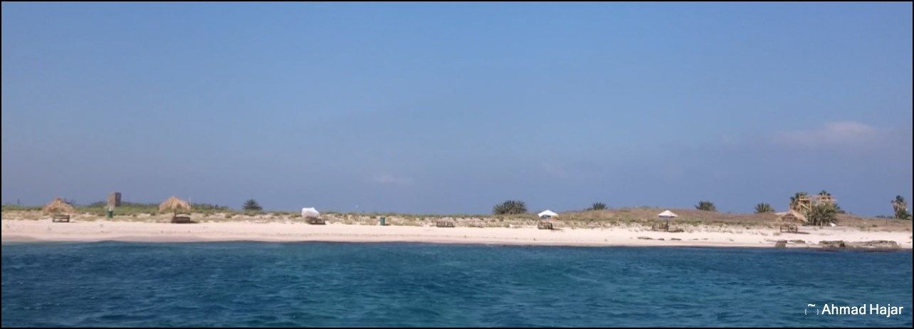 جزيرة الأرانب Beach Outdoor Water