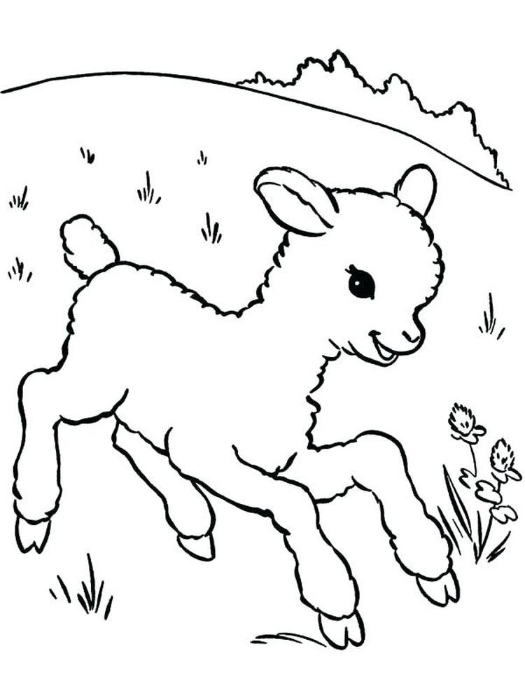 Sheepdog Coloring Pages Coloring Pages Winter