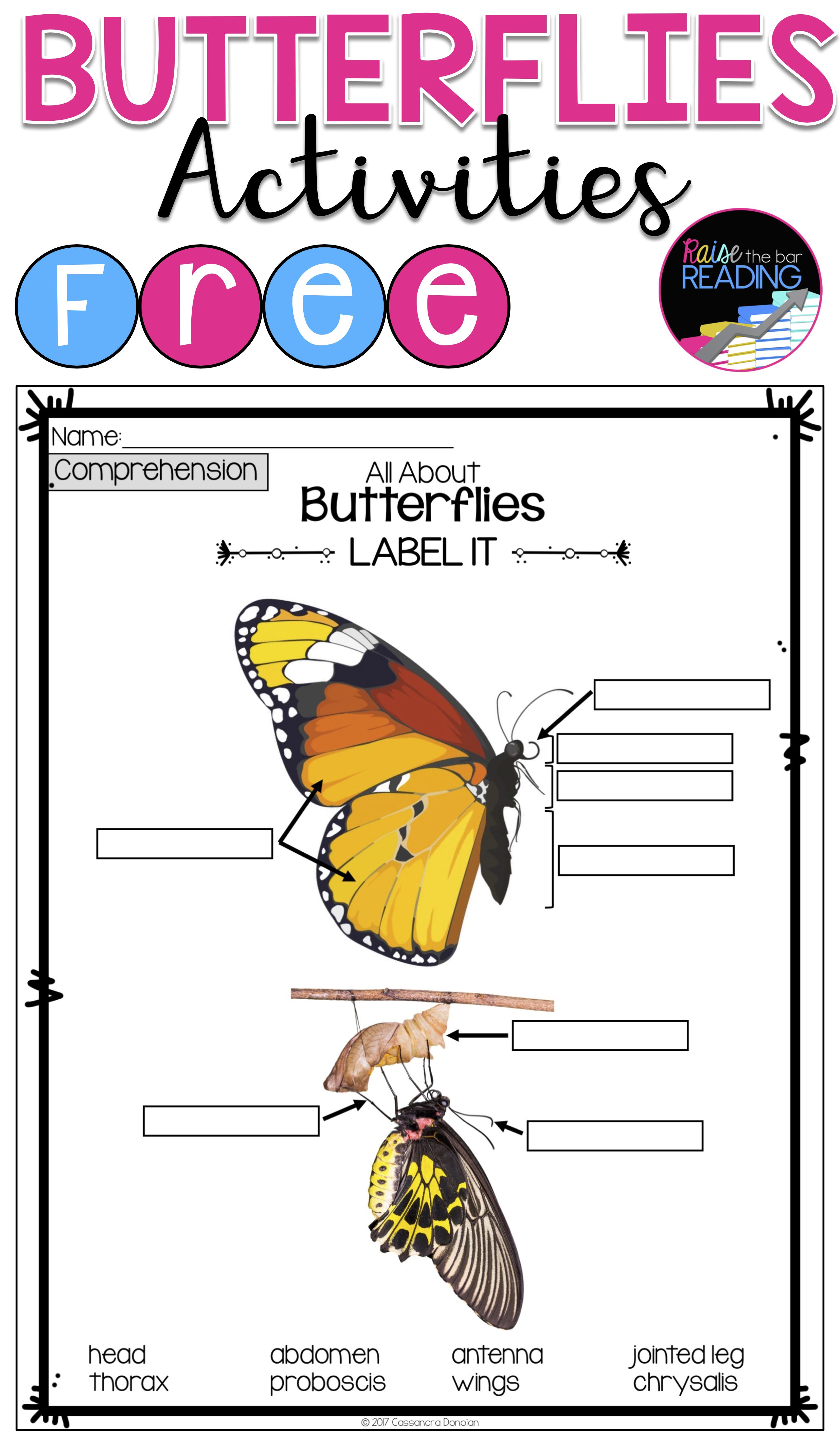 Free Butterflies Activities Insects Unit Or Informational Text Activities Butterflies Activities Informational Texts Activities Insect Unit [ 4650 x 2700 Pixel ]