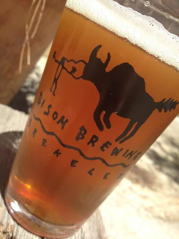 Bison Brew Creates a Line of Sustainably Produced Alcohol-Infused Beers #beer #craftbeer trendhunter.com