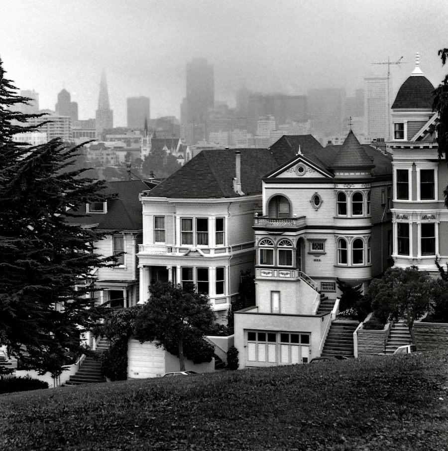 Looking east from Alamo Square Park, San Francisco (1985) Dave Glass, photog.