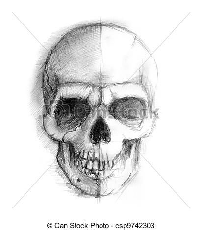 Comment dessiner un crane skull tattoo pinterest - Dessiner un squelette ...
