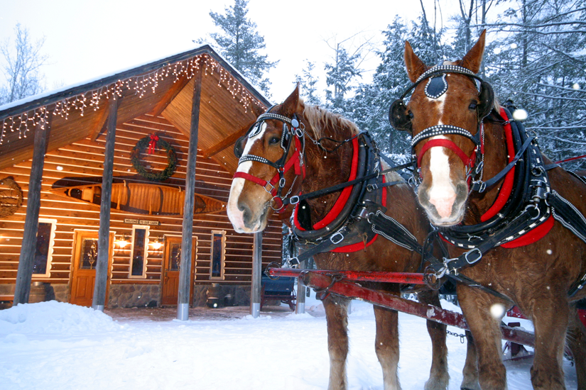 This Michigan resort provides so much more than just a sleigh ride. Description…