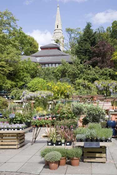 Garden Center display ideas | Stamen & Pistil Boutique Nursery ...