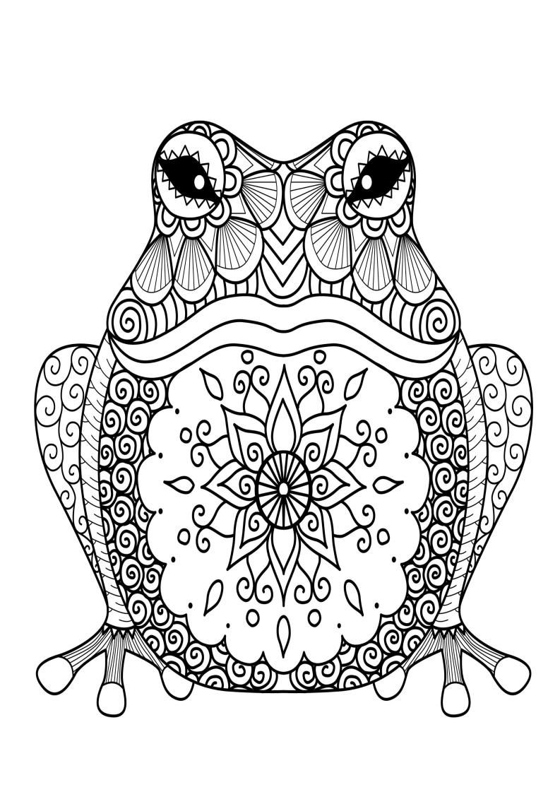 Mindfulness Coloring Frog In 2020 Animal Coloring Books Animal Coloring Pages Frog Pictures