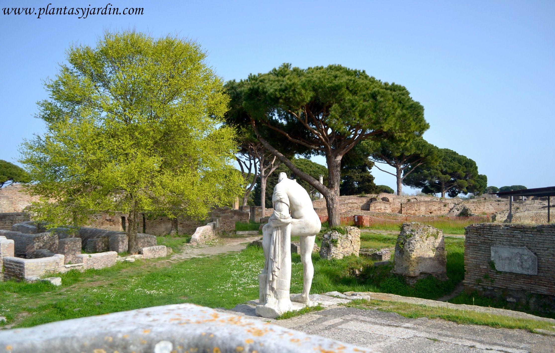 Jardines con esculturas cl sicas ostia antica el puerto - Esculturas para jardines ...