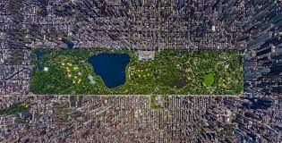 Central Park: the City's Oasis