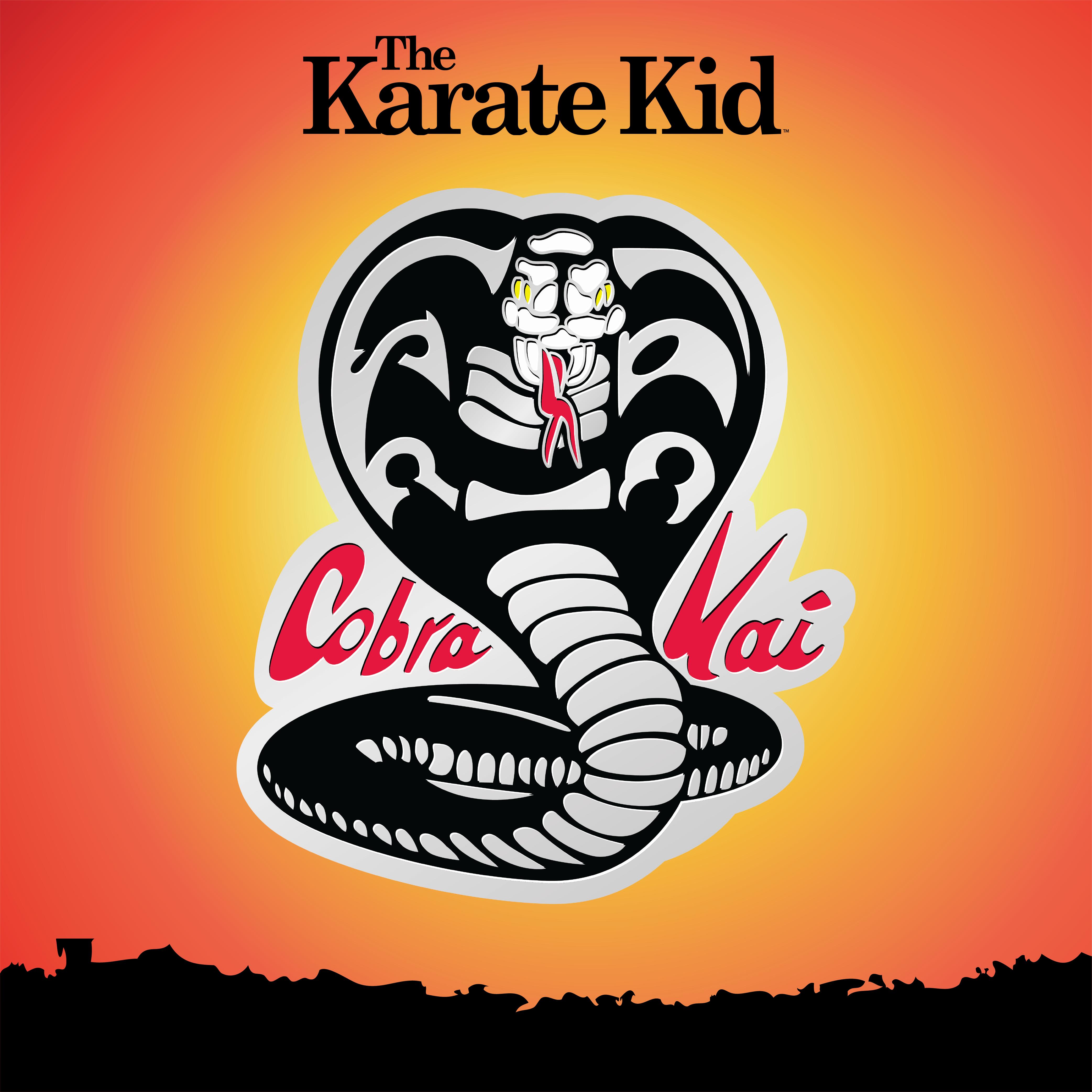 The Karate Kid Cobra Kai Logo Enamel Pin Silver Edition Exclusive In 2021 Kid Cobra Karate Kid Cobra Kai Karate Kid