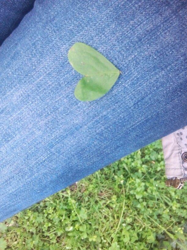 Mon coeur vert