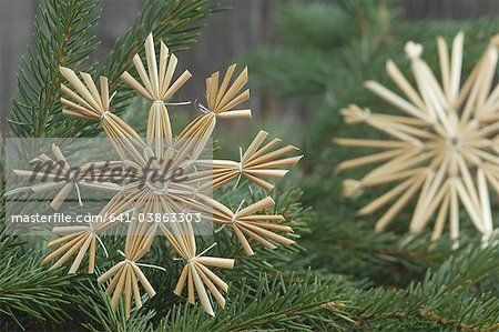 Close up of straw star on fir twig for christmas decoration