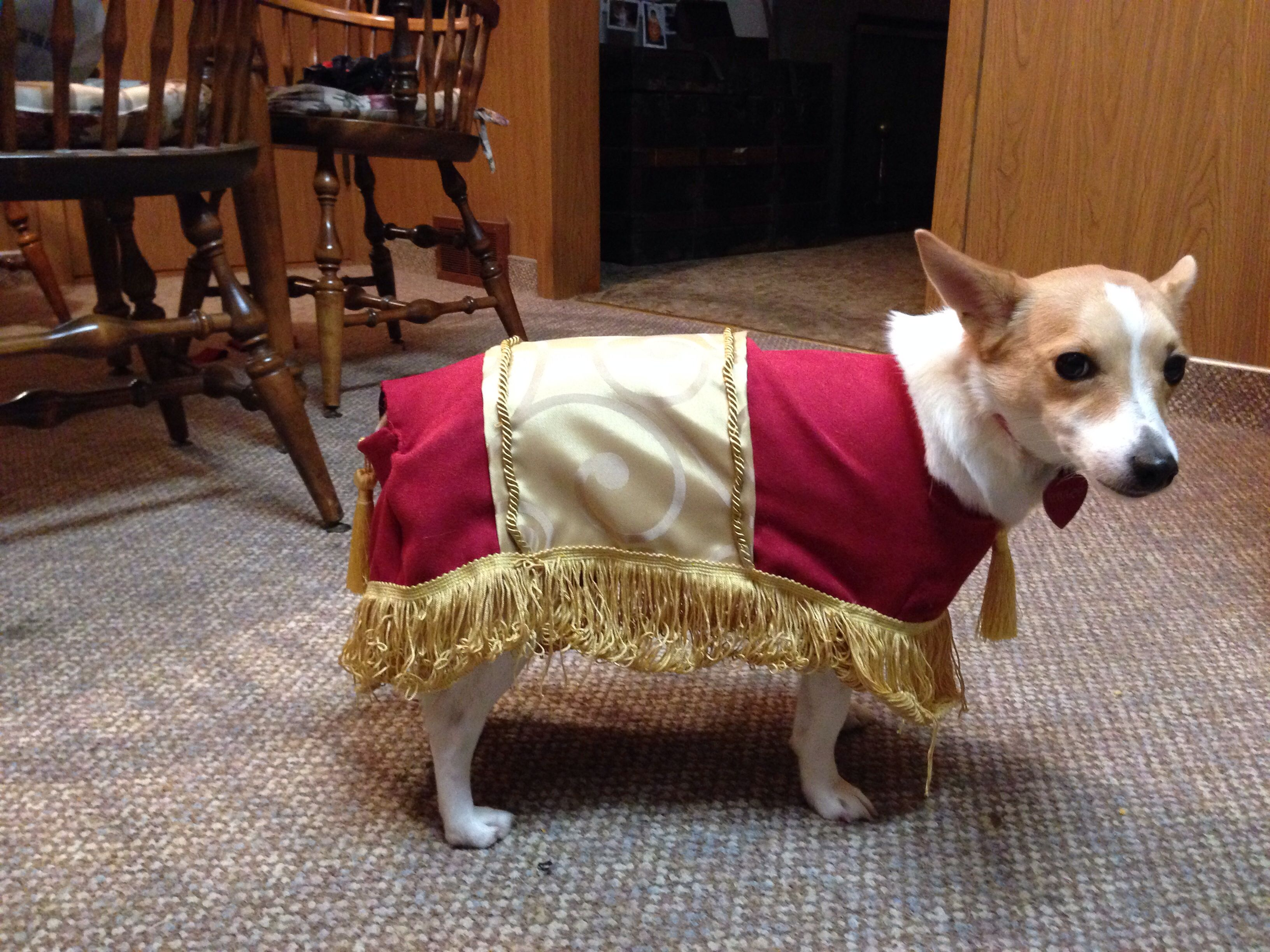 The Foot Stool From Beauty And The Beast Costume For A Dog