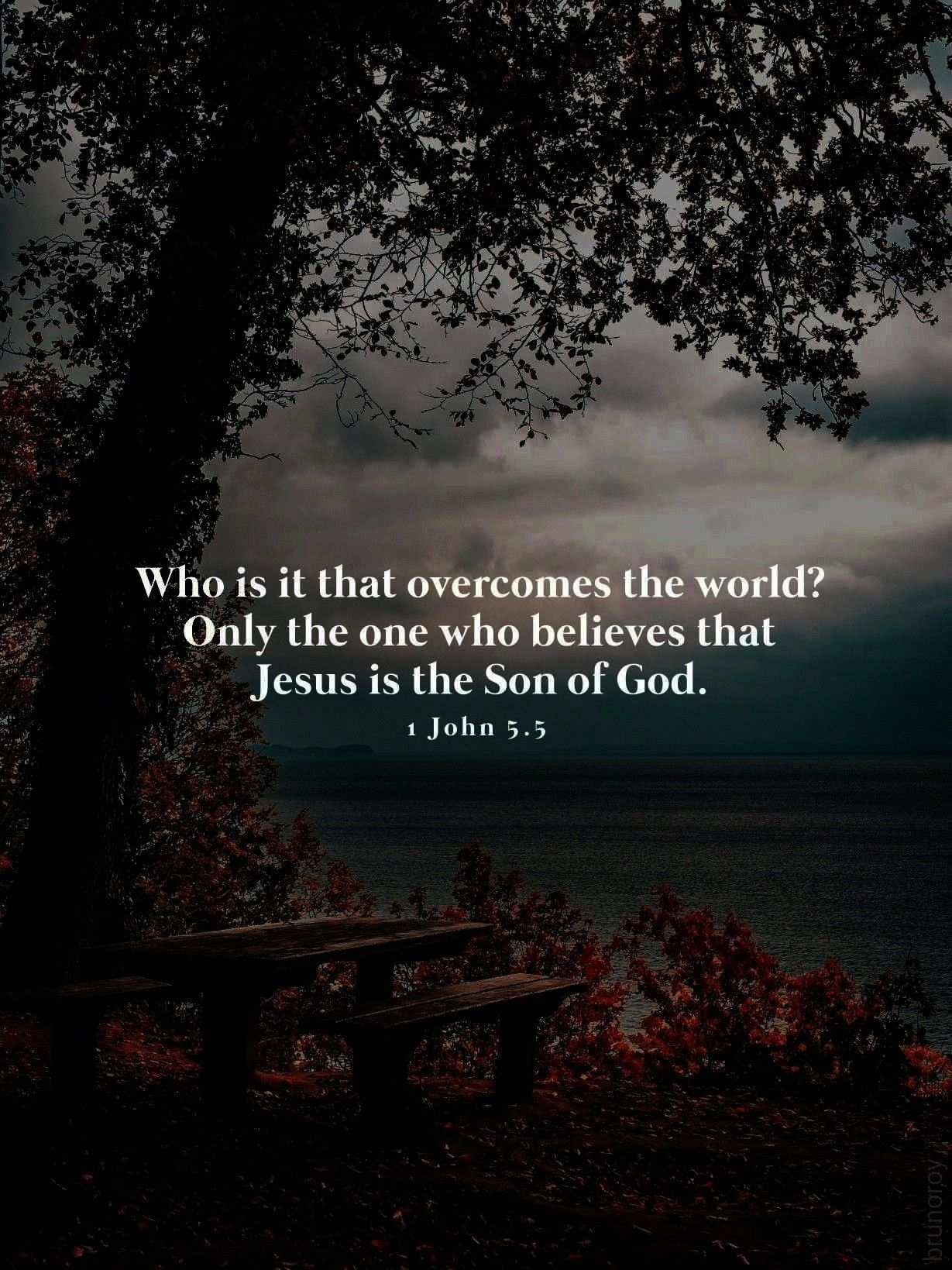 the world Only the one who believes that Jesus is the Son of God 1 John 55Who is it that overcomes the world Only the one who believes that Jesus is the Son of God 1 John...