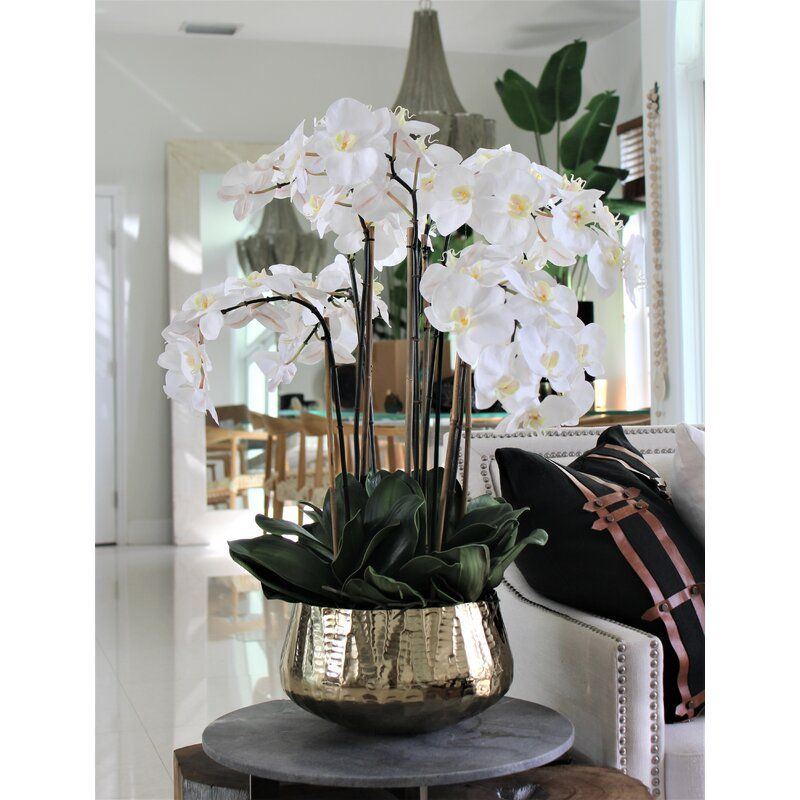 Roberi Bowl With Multiple Stems Of White Phalaenopsis Orchids In 2021 Table Vases Orchid Flower Arrangements Orchids