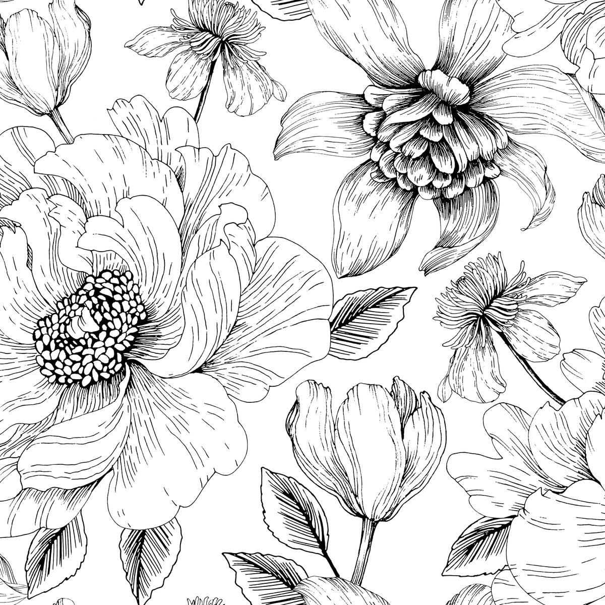 лица красивые черно белые картинки цветы давления используются при