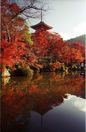 kiyomizu temple kyoto japan beautiful places in japan kiyomizu temple japan travel