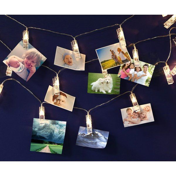 ec18499bb8407f You ll love the Battery Powered 20 Light String Lights at Wayfair - Great  Deals on all Lighting products with Free Shipping on most stuff