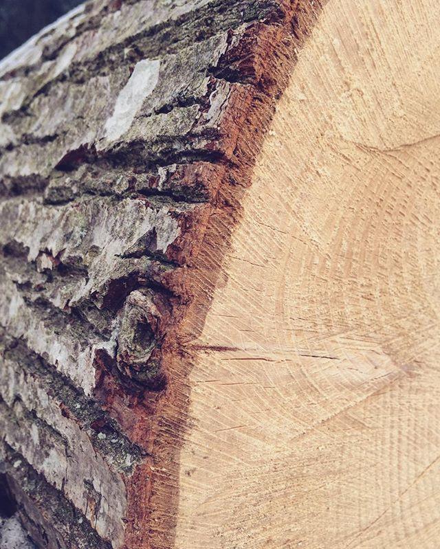 #linde #lime #limetree #wood #trunk #woodwood #kitchen #tool #kitchentools #vudvud #holz #woodwork #woodworking #workshop #handmade #handcraft #love #passion #design #handcrafted #grain #madeinaustria #igersaustria  Yummery - best recipes. Follow Us! #kitchentools #kitchen