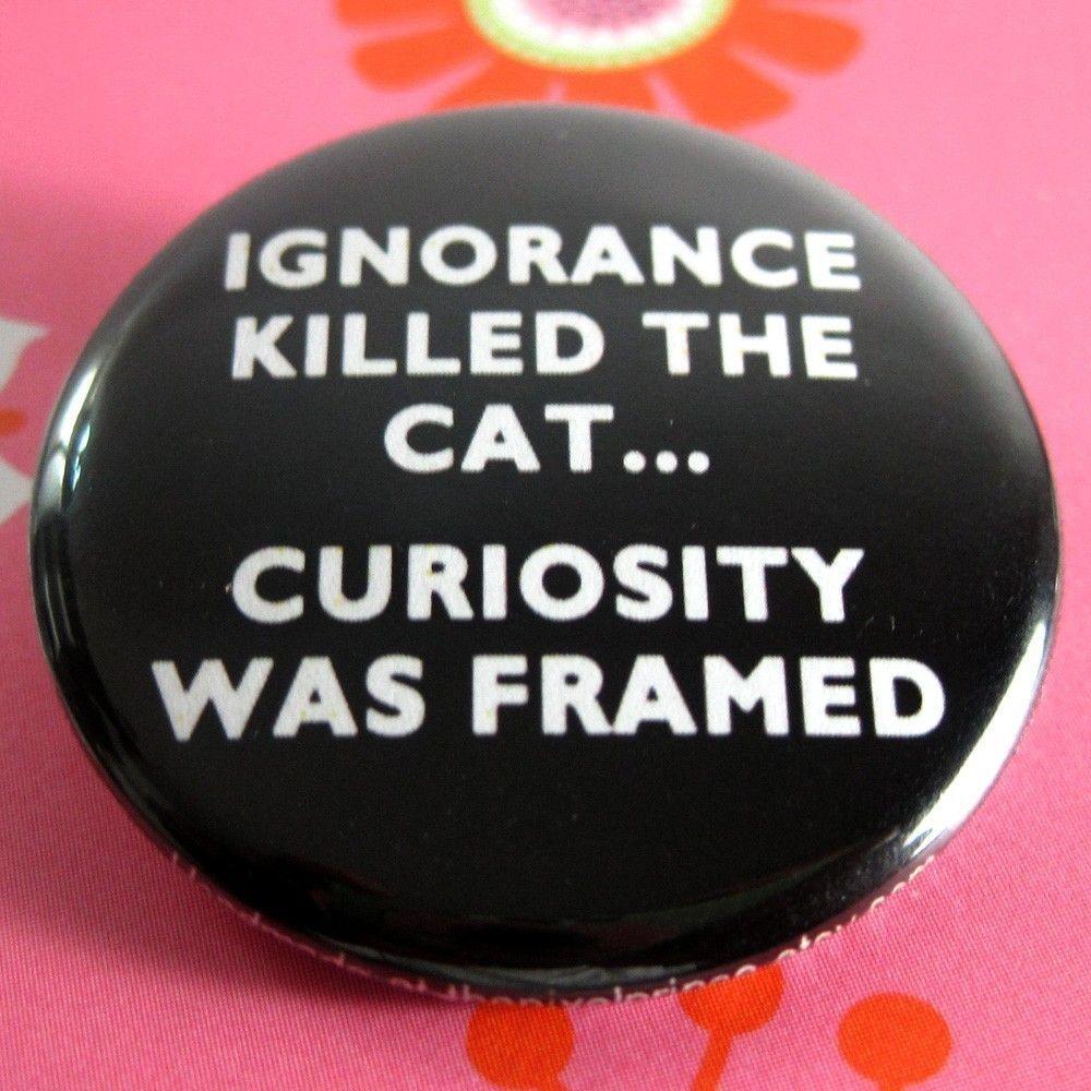 Ignorance Curiosity Killed The Cat Cute Quotes Curiosity
