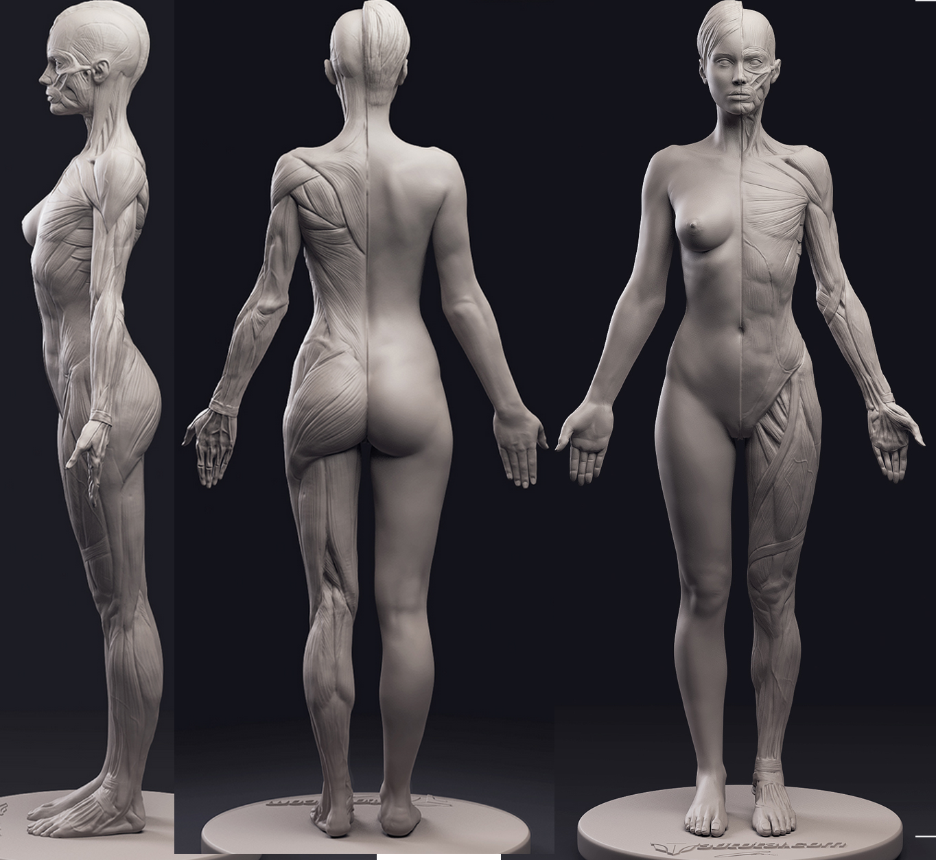 Pin By Jose Soto On Physical Sculpture In 2019 Pinterest Zbrush