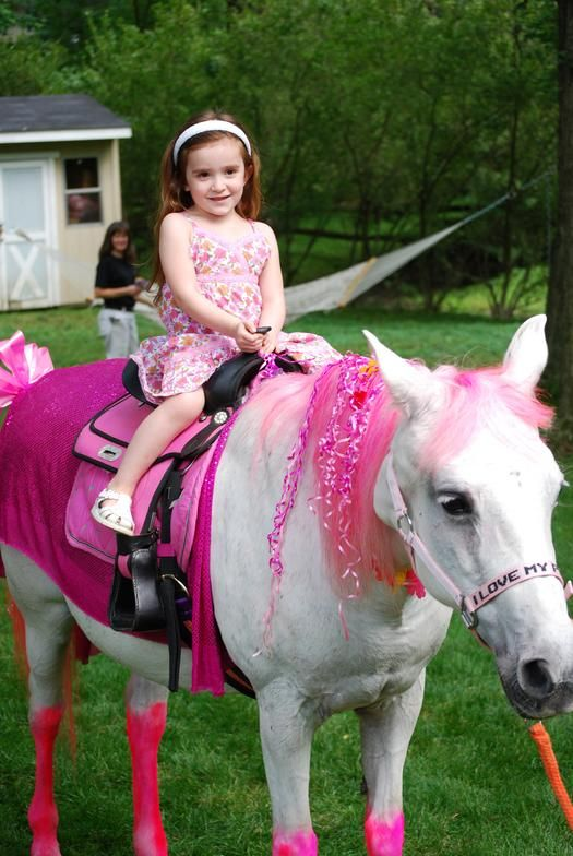 Unicorn Pony Rides For Birthday Parties Philly South Jersey My Little Pony Party Little Pony Party Pony Birthday Party