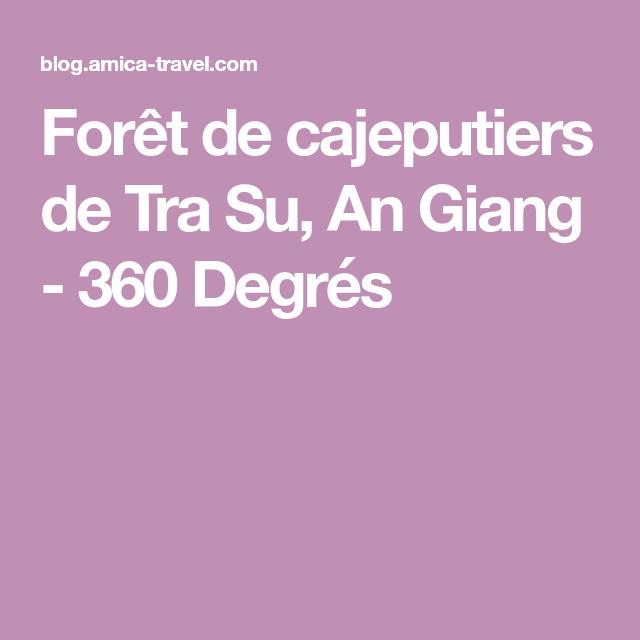 Forêt de cajeputiers de Tra Su, An Giang - 360 Degrés