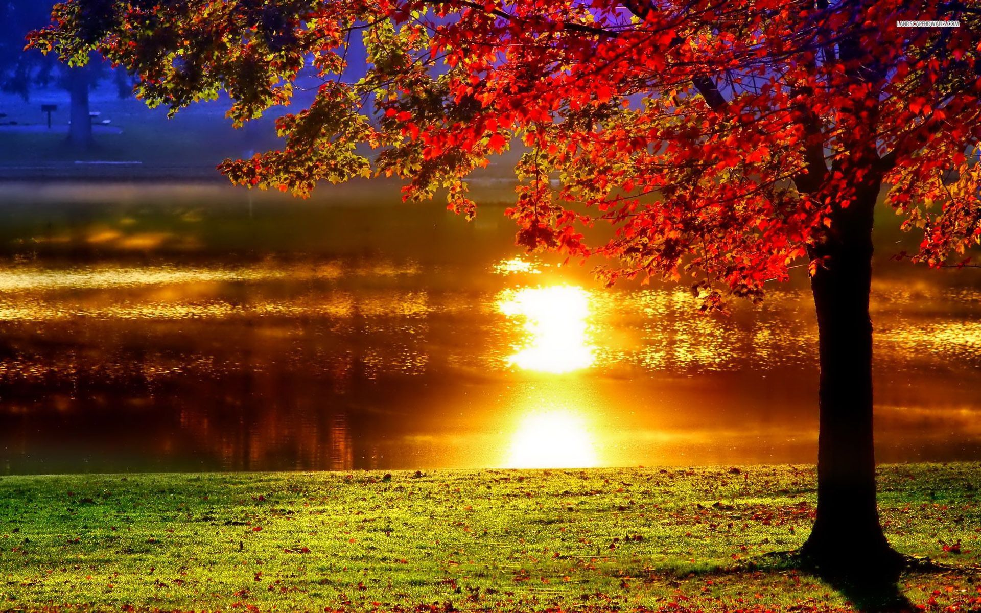 Love In Islam A Necessary Ingredient About Islam Sunset Wallpaper Nature Wallpaper Sunset Painting