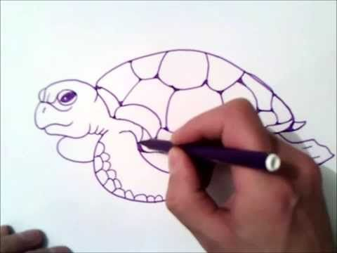 How To Draw A Sea Turtle Step By Step How To Draw A Sea Turtle Youtube Flower Drawing Tutorials Easy Animal Drawings Turtle Drawing