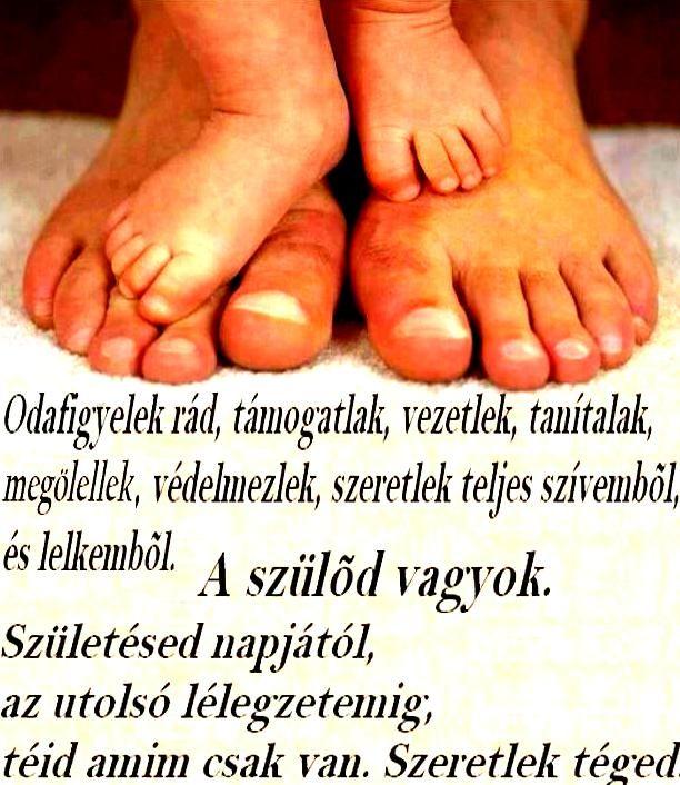 anya apa idézetek Idézetekkel sok mindent ki lehet fejezni így az anyai és az apai