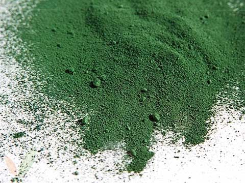 THE BENEFITS OF SPIRULINA Info Vegans Should Know Pinterest - resume rabbit