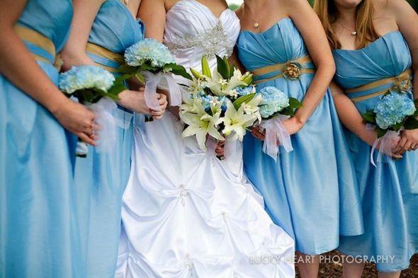 Sky Blue Wedding Colors - W/o The Belt Dress Idea