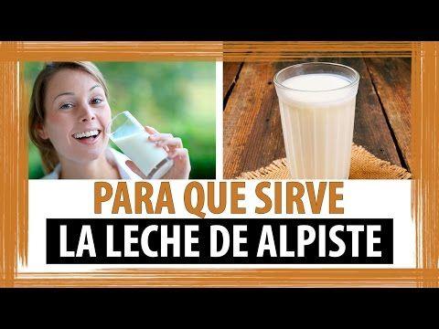 Leche de Alpiste - La Guía para obtener las Propiedades y Beneficios