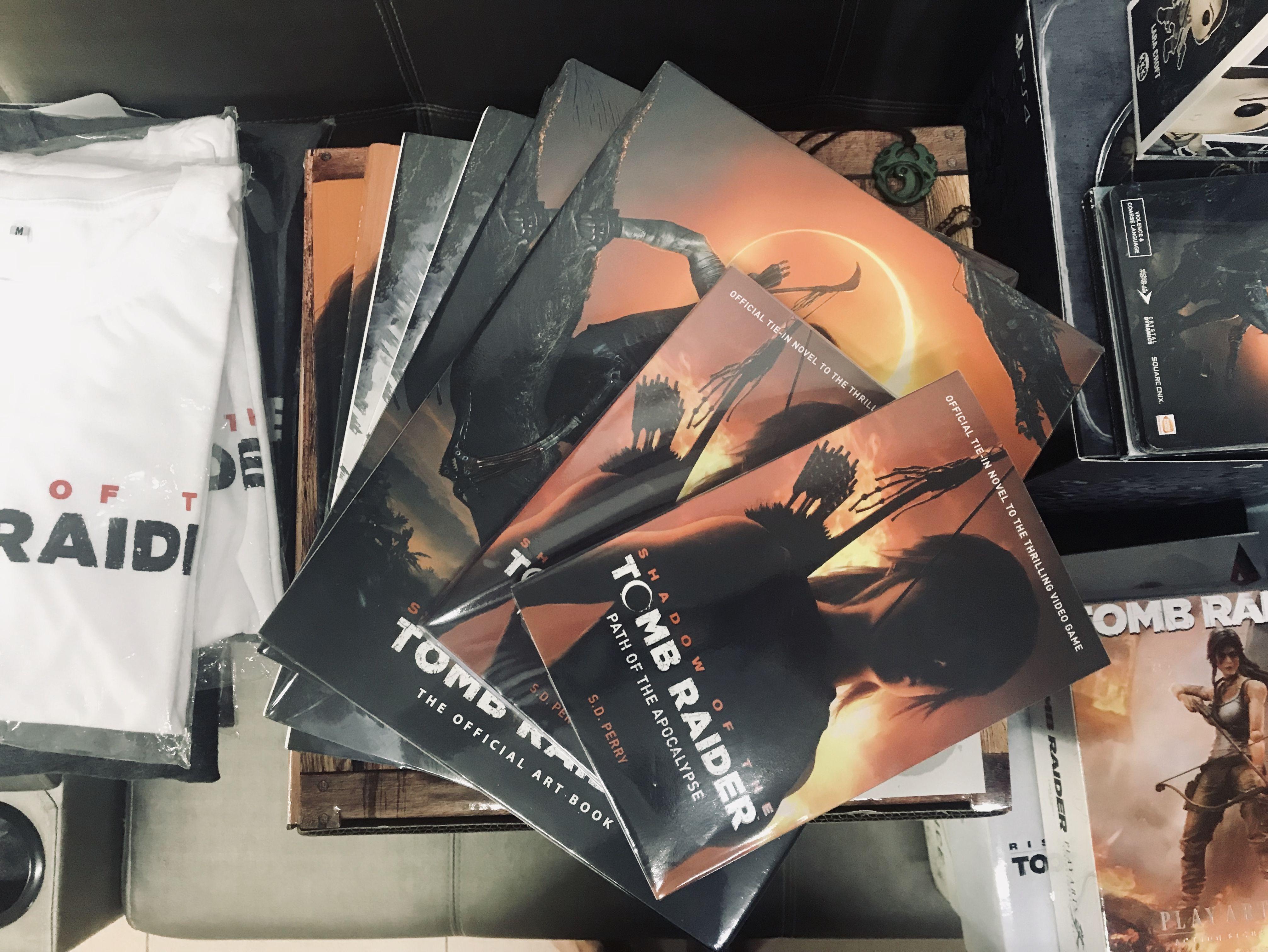 Tomb Raider Books And Art Book