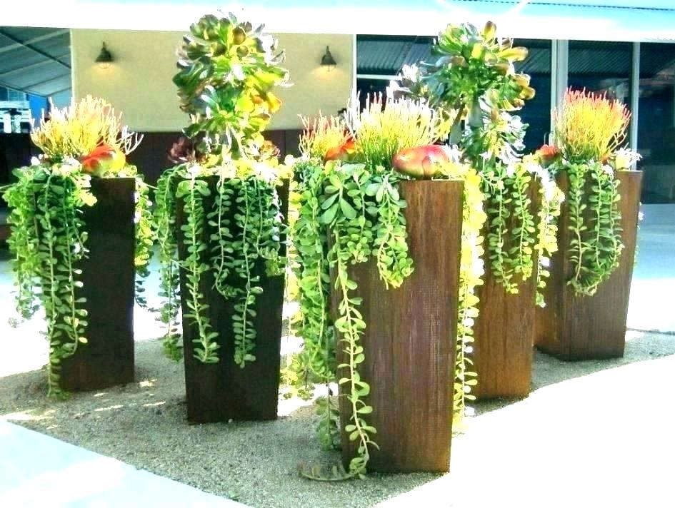huge terracotta pots flower oversized giant plant large