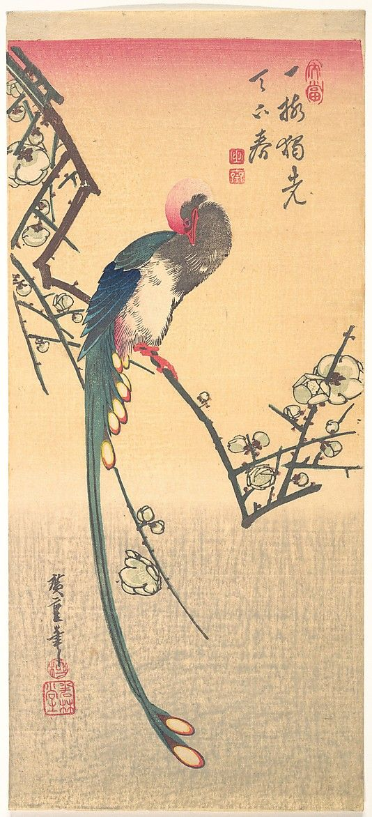 Bird on a Plum Branch  Andô Hiroshige  (Japanese, 1797–1858)  Period: Edo period (1615–1868) Culture: Japan Medium: Polychrome woodblock print; ink and color on paper