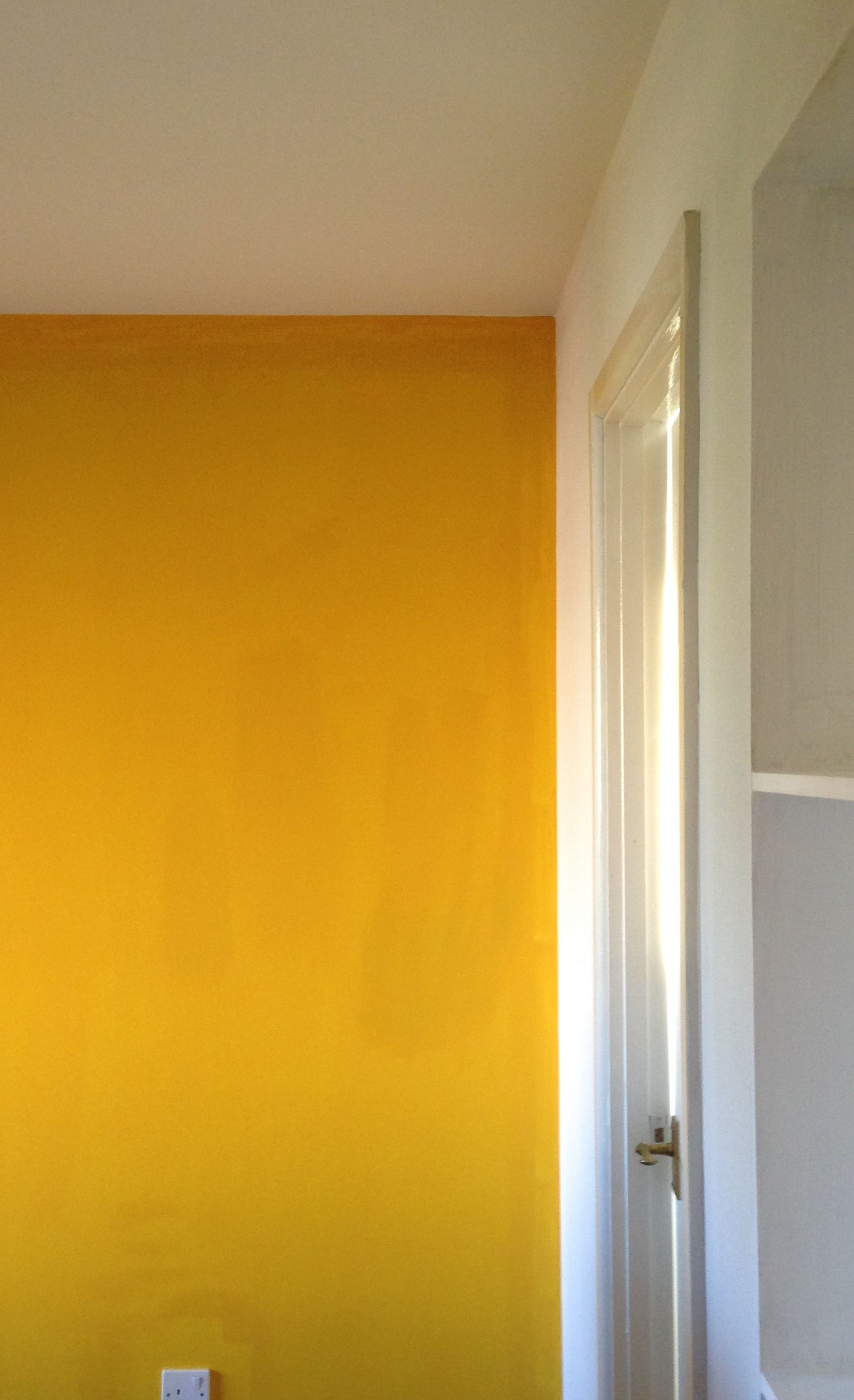 Pure joy of colour: turmeric on white | Barvy in 2018 | Pinterest ...
